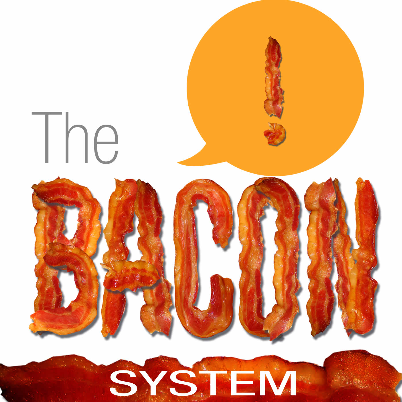 The Bacon System The Bacon System - Sales Page - The Bacon